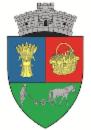 Primaria Comunei Sannicolau Roman